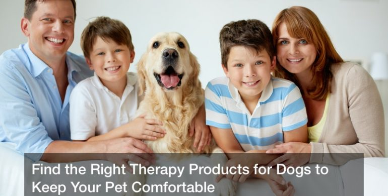 Find the Right Therapy Products for Dogs to Keep Your Pet Comfortable