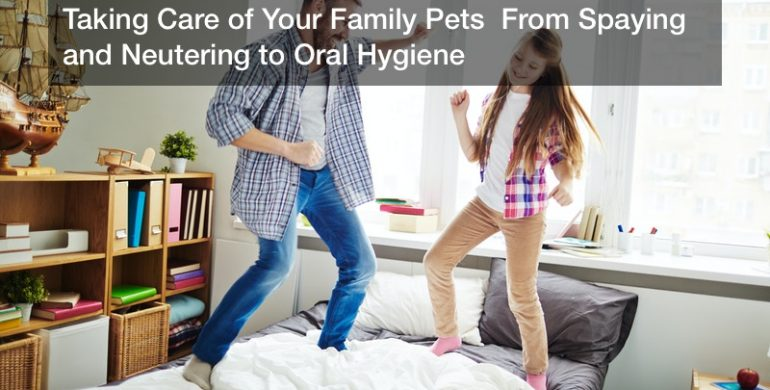 Taking Care of Your Family Pets  From Spaying and Neutering to Oral Hygiene