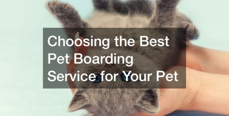 Choosing the Best Pet Boarding Service for Your Dog or Cat